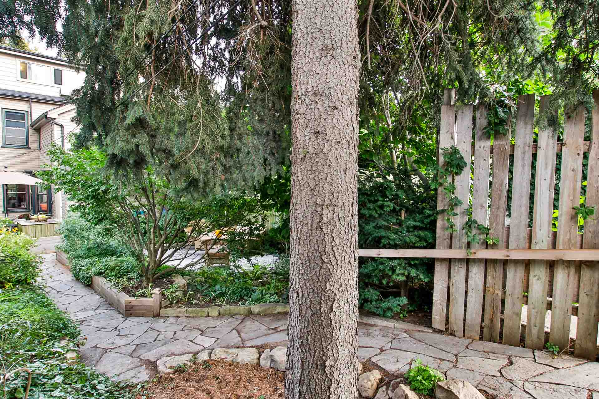 44_backyard